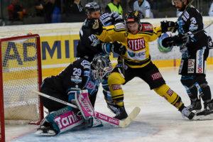 Vienna Capitals vs Black Wings Linz