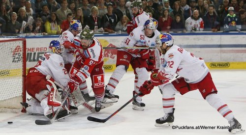 EC Red Bull Salzburg - HC Bozen Bernhard Starkbaum #29, Mike Halmo #91, Matthias Trattnig  #51, John Hughes  #72 ©Puckfans.at/Werner Krainbucher
